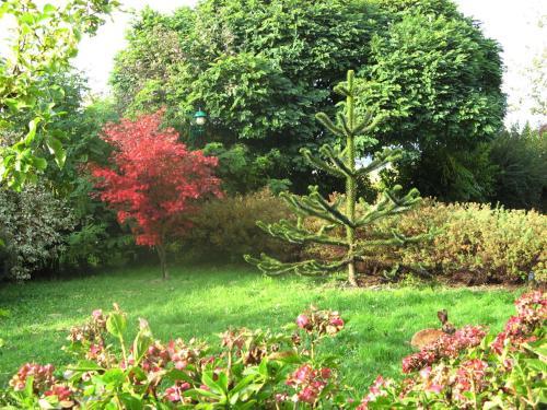 A garden outside Dreilandhof