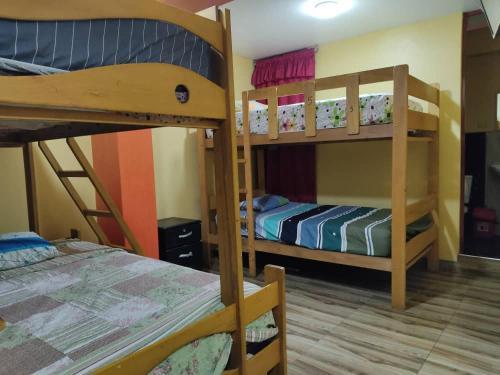 A bunk bed or bunk beds in a room at HOSTAL EL REY