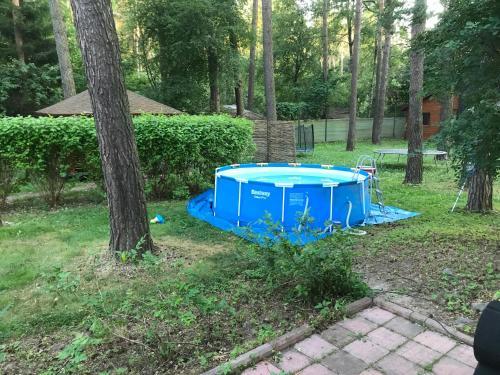 Сад в Дом для отдыха в сосновом бору