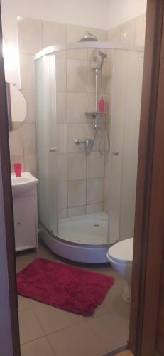 Ein Badezimmer in der Unterkunft Noclegi pod Gąską