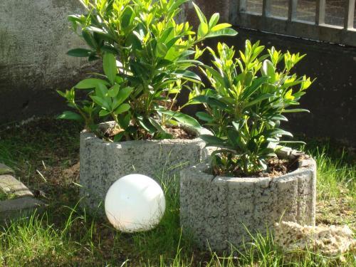 Сад в Hotel Gartenhof
