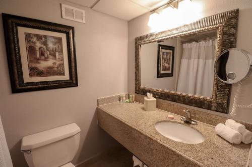 A bathroom at Wyndham Houston near NRG Park - Medical Center