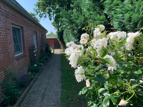 Ein Garten an der Unterkunft Ferienwohnung Landfein