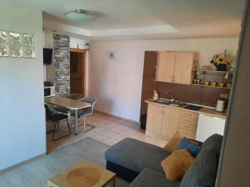 A kitchen or kitchenette at Apartman U Adamov