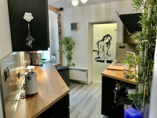 A kitchen or kitchenette at Pod Bykiem
