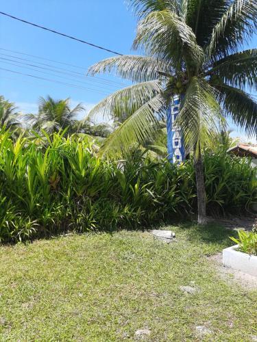 A garden outside Pousada Hawai