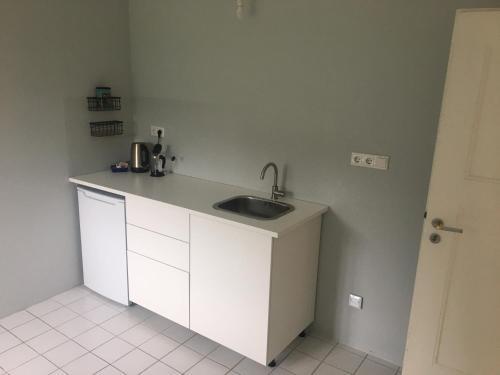 A kitchen or kitchenette at Villa Erbschloe