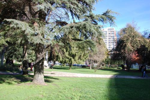 A garden outside Hotel Plaza Concepción