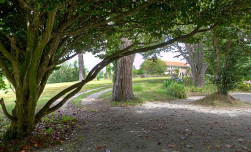 Jardín al aire libre en Posada Rolisas