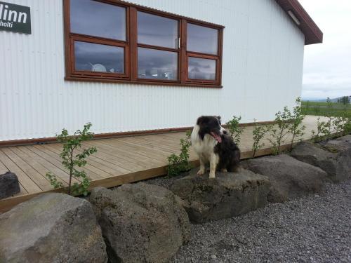 Skálinn between Gullfoss and Geysir - Myrkholt Farm