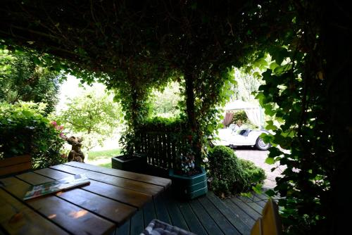 A garden outside Hotel Mittelweg