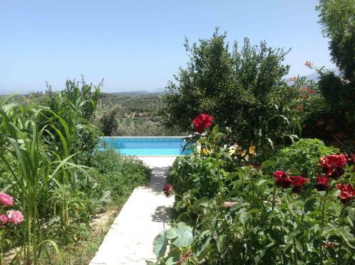 Vista sulla piscina di The Garden Villas o su una piscina nei dintorni