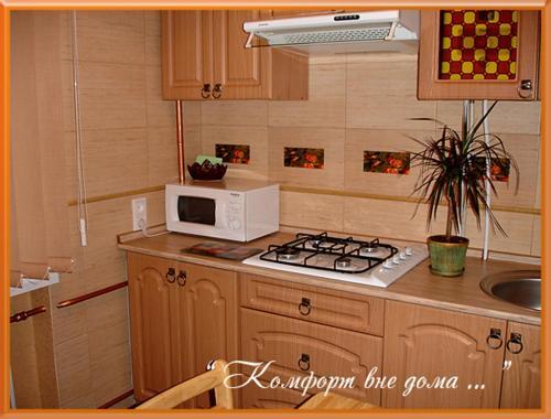 A kitchen or kitchenette at Apartments Zatyshok