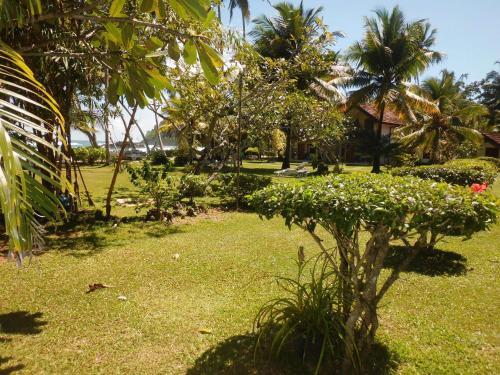 A garden outside Paradise Beach Club
