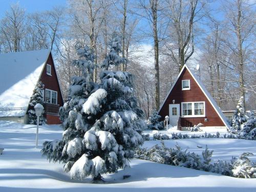 Ferienpark Rosstrappe im Winter