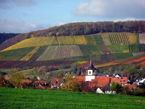 Landpension Wachtkopf Ferienwohnungen с высоты птичьего полета