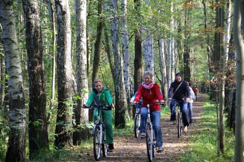 Radfahren an der Unterkunft Spreewaldhotel zum Krabat mit Ferienwohnungen der KrabatResidenz oder in der Nähe
