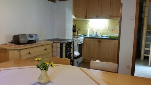 Küche/Küchenzeile in der Unterkunft Počitniška hiša Ukanc