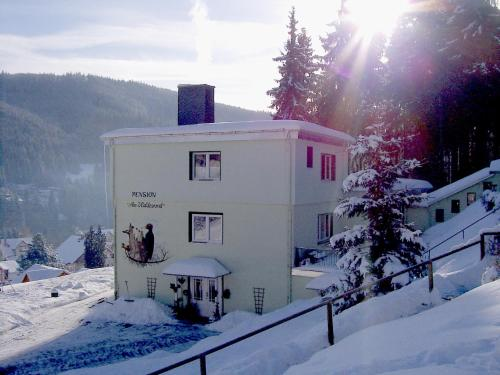 Pension Am Waldesrand during the winter