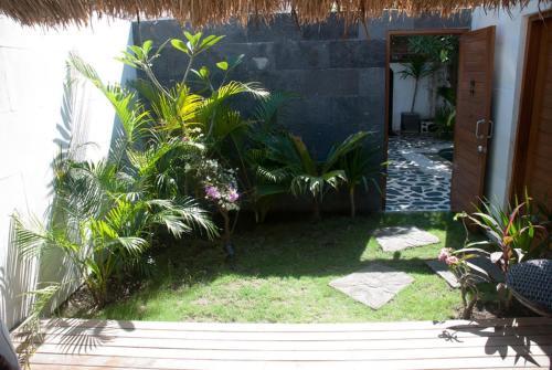 A garden outside Scallywags Mango Retreat