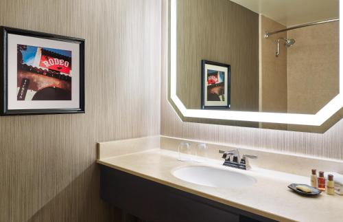 A bathroom at Sheraton Fort Worth Downtown Hotel
