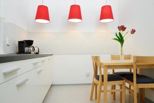 Küche/Küchenzeile in der Unterkunft Aparthotel am Zwinger