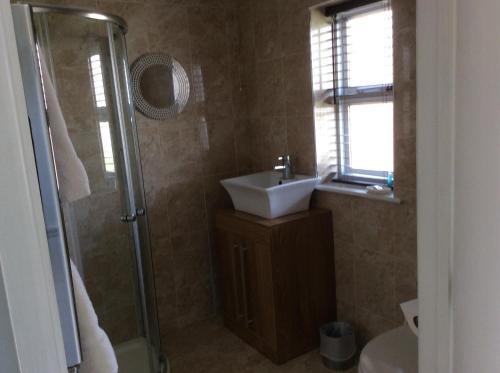 A bathroom at Swan Motel