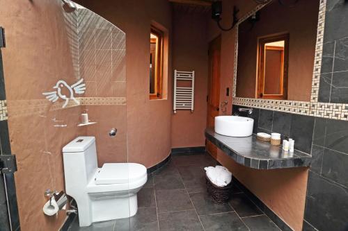 A bathroom at Hotel Pascual Andino
