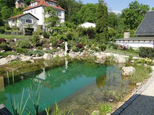Бассейн в Pension Villa am Burgberg или поблизости