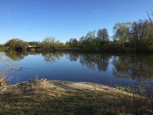 Utsikt över en sjö i närheten av campingen