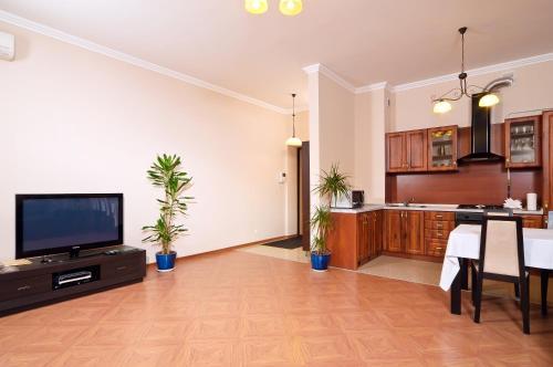 Телевізор і / або розважальний центр в Botanic Apartments Krasnoarmeyskaya