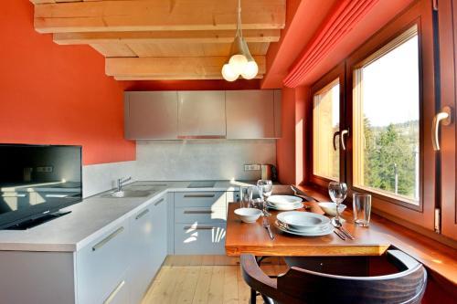 Kuchyň nebo kuchyňský kout v ubytování Apartment Loucky