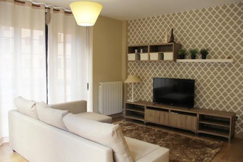 A television and/or entertainment center at Apartamentos Vino y Camino