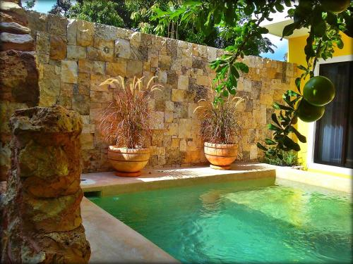 Piscine de l'établissement Hotel Casa Hipil ou située à proximité