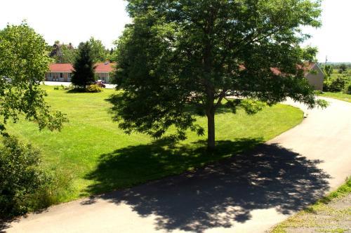 Сад в Downeast Motel