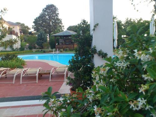 Πισίνα στο ή κοντά στο Hotel Pelion Resort