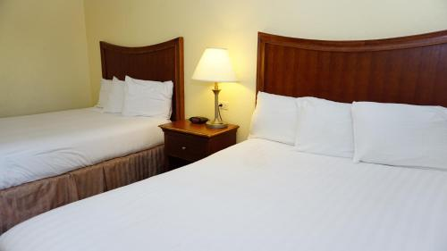 A bed or beds in a room at Baymont by Wyndham Arlington At Six Flags Dr