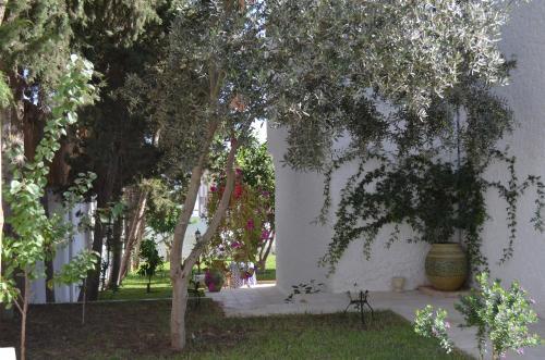 حديقة خارج Dar Salama
