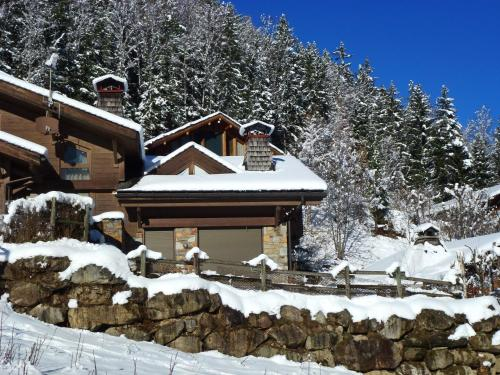 Chalet Panorama during the winter