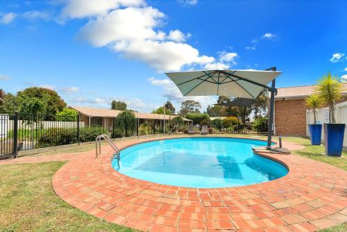 The swimming pool at or near Begonia City Motor Inn