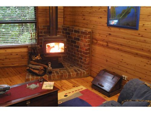 A television and/or entertainment center at The Mouses House Rainforest Retreat