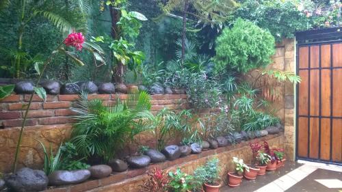 A garden outside Hotel Casa De Angeles