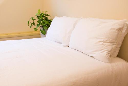 A bed or beds in a room at AnnArthur Guest House