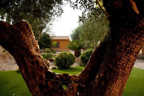 Jardín al aire libre en El Mirador de Gebas