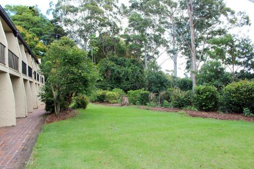 A garden outside Mt Tamborine Motel