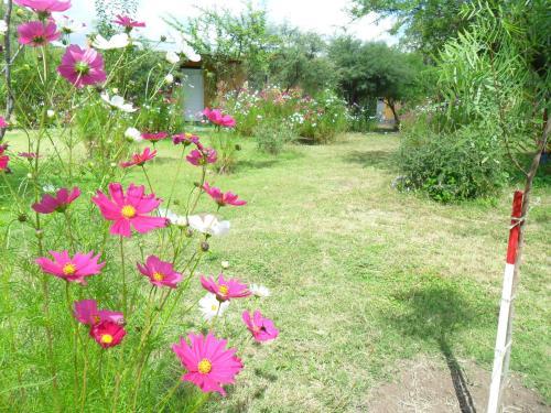 Un jardín fuera de Cabañas Mandala