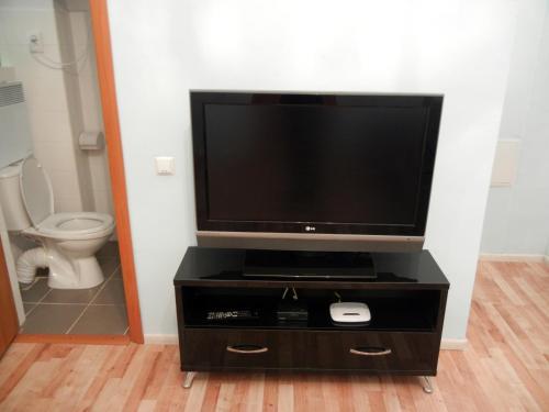 Телевизор и/или развлекательный центр в Apartment On Knyazya Romana 26 Center Lviv