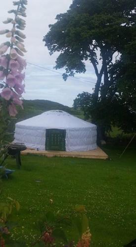 A garden outside The Yurt