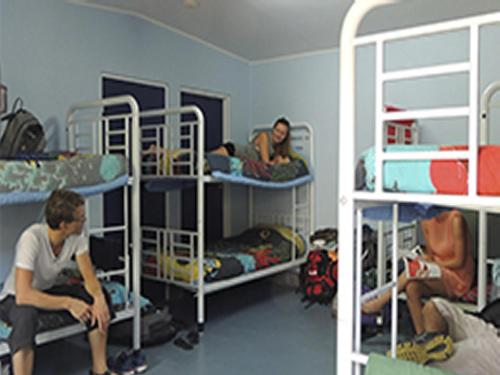 A bunk bed or bunk beds in a room at Reef Lodge Backpackers