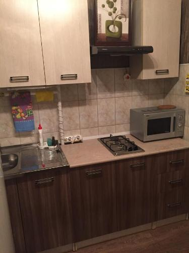 Кухня или мини-кухня в Apartment Frunze 23